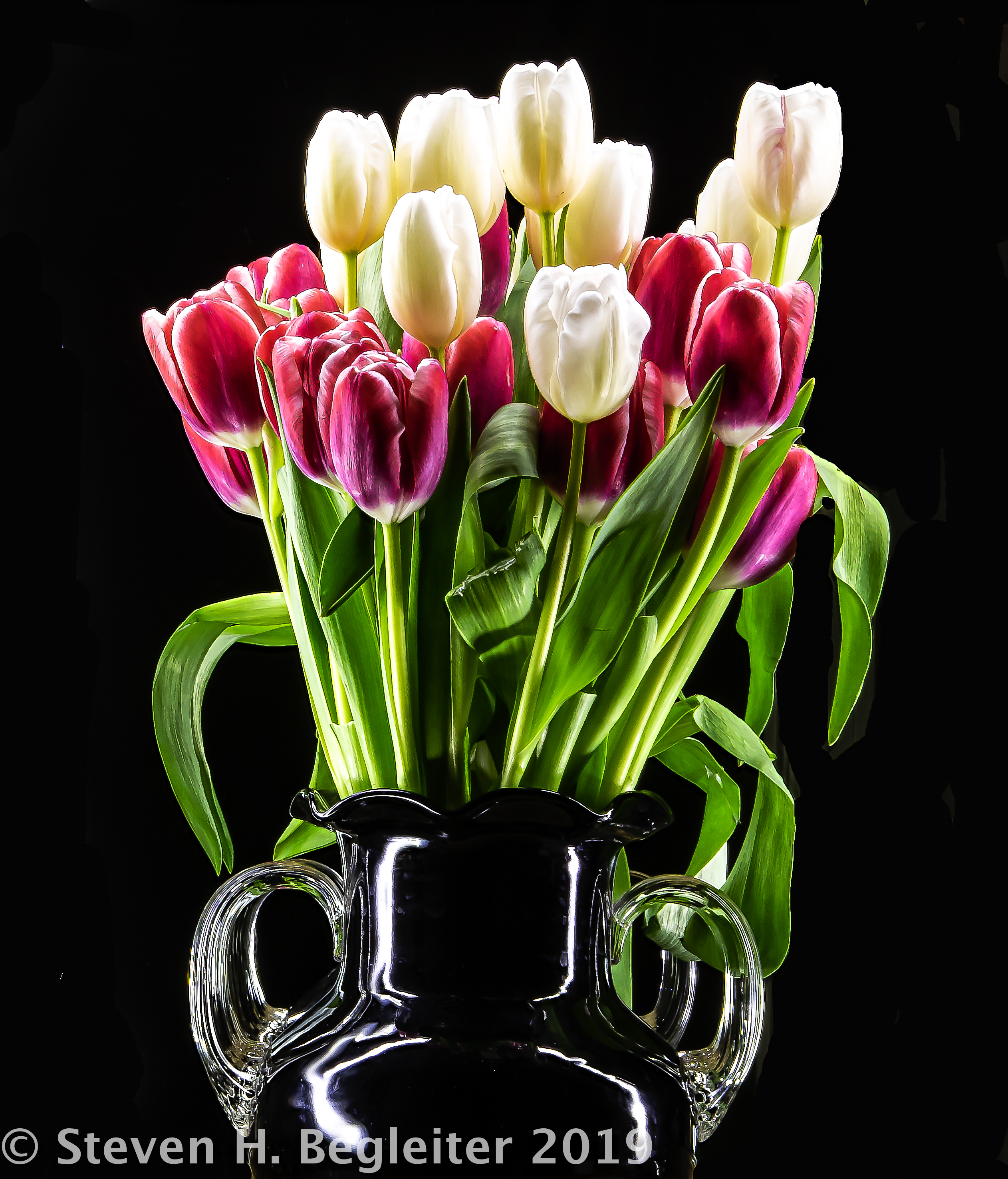 book6flash-tulips-1